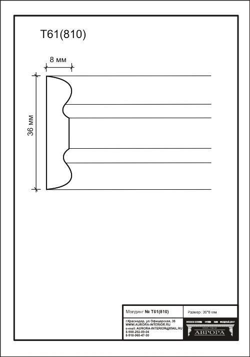 Гипсовая лепнина Аврора молдинг Т61 (810)